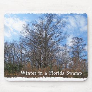 Escena del invierno del pantano de la Florida Cypr Tapetes De Raton