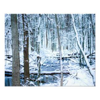 escena del invierno cojinete