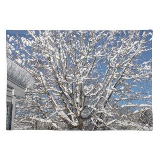escena del invierno manteles
