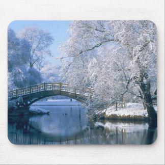 Escena del invierno mouse pad
