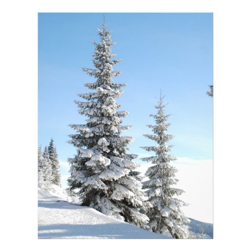 Escena del invierno Nevado con los árboles de navi Tarjetones