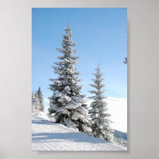 Escena del invierno Nevado con los árboles de navi Posters