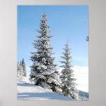 Escena del invierno Nevado con los árboles de navi Poster