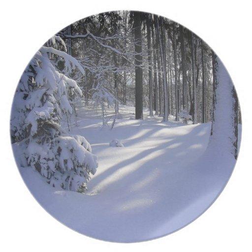 Escena del invierno plato de comida