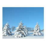 Escena del invierno postal