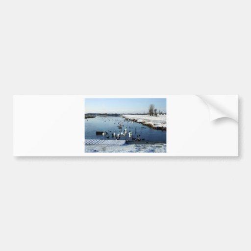 Escena del lago del canotaje del invierno con la a pegatina de parachoque