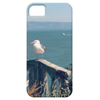 Escena del océano (con la gaviota) funda para iPhone SE/5/5s