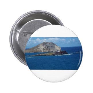 Escena del océano de Hawai'ian Pins