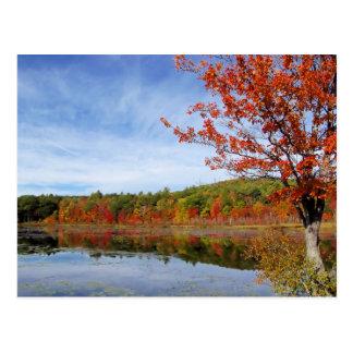 Escena del otoño de la charca de Perkins Tarjeta Postal