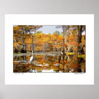 Escena del otoño - lago Caddo Póster