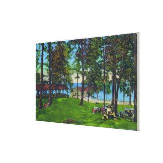 Escena del parque de estado del lago Cayuga Impresion En Lona