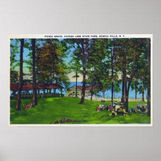 Escena del parque de estado del lago Cayuga Posters