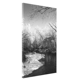Escena del río de B&W - impresión estirada de la l Lona Estirada Galerías