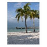 Escena dominante de la playa de la Florida del Lar Postal