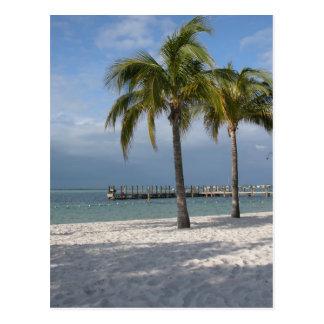 Escena dominante de la playa de la Florida del Postal