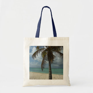 Escena hermosa de la naturaleza de la playa I de