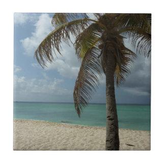 Escena hermosa de la naturaleza de la playa I de Azulejo Cuadrado Pequeño