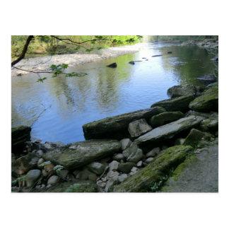 Escena hermosa de la orilla del río postal