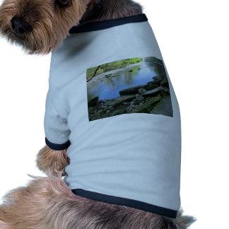 Escena hermosa de la orilla del río camiseta con mangas para perro
