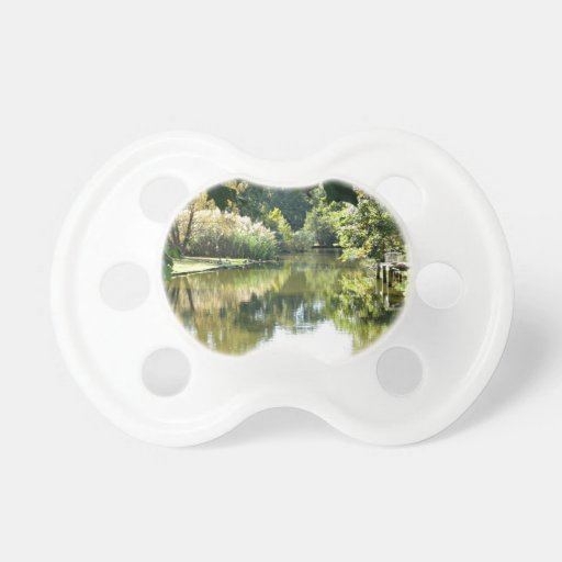 Escena hermosa del agua chupetes de bebe