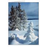 Escena hermosa del invierno tarjeta de felicitación