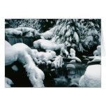 Escena impresionante del invierno tarjeta de felicitación