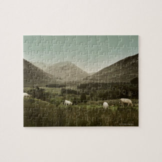 Escena irlandesa de la montaña puzzle