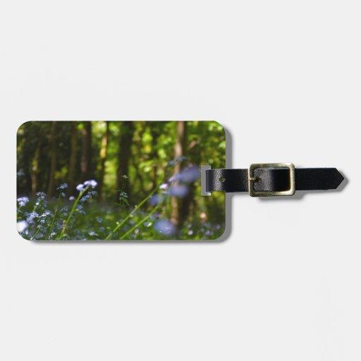 Escena natural de la primavera de maderas etiquetas de maletas