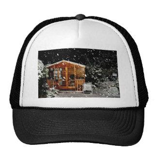 escena nevosa del winer de la casa de verano gorros