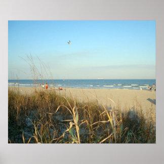 Escena No.3 de la playa de la primavera Impresiones