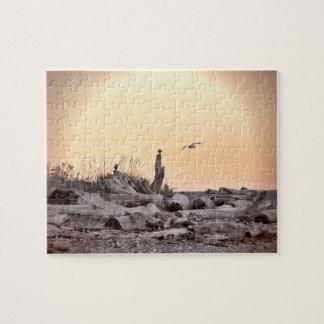 Escena nostálgica de la playa puzzles con fotos