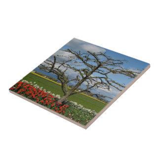Escena pastoral azulejo cerámica