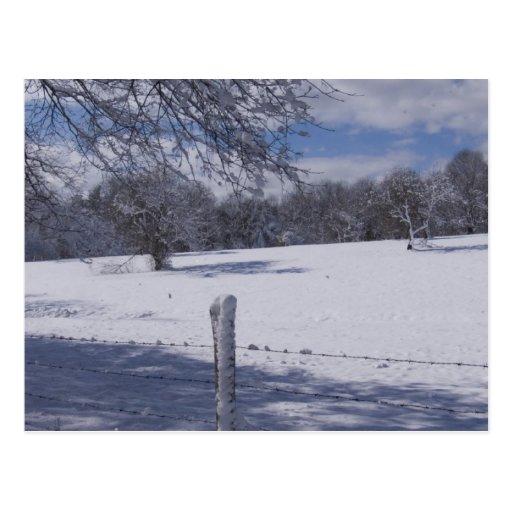 Escena-Postal del invierno de Nueva Inglaterra Postales