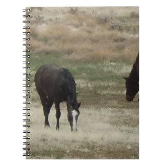 Escena rural de pasto bonita del caballo libros de apuntes