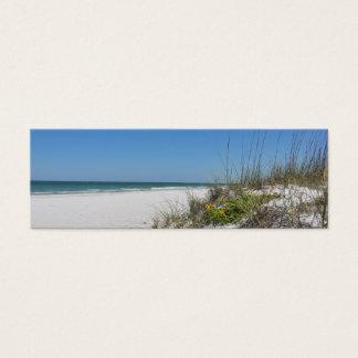 Escena serena de la playa de la Florida de la Tarjetas De Visita Mini