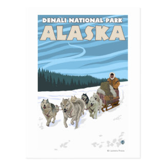 Escena Sledding del perro - parque nacional de Postal