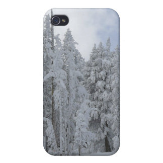 Escena-Speck®Case del invierno iPhone 4/4S Carcasa