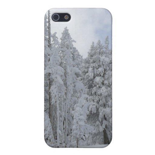 Escena-Speck®Case del invierno iPhone 5 Cárcasa