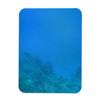 Escena subacuática del fondo iman rectangular