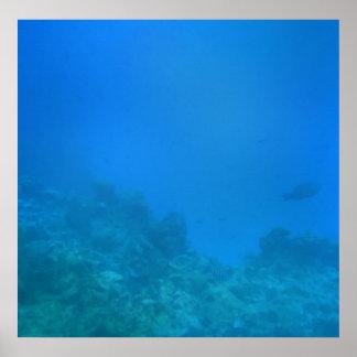 Escena subacuática del fondo impresiones
