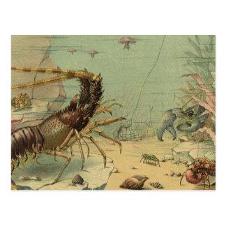 Escena subacuática del océano del vintage con vida tarjetas postales