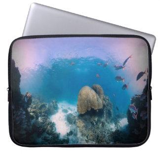 Escena subacuática del océano fundas portátiles