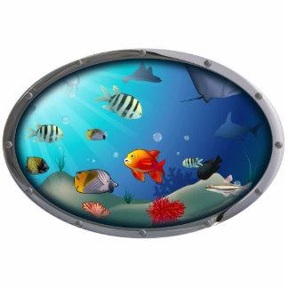 Escena subacuática imán fotoescultura