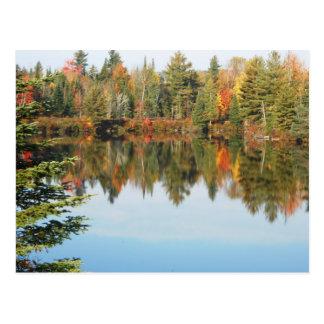 Escena superior del otoño del río del cacho del postal