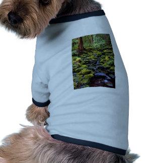 Escena típica de la selva tropical cerca de las ag camisa de perrito
