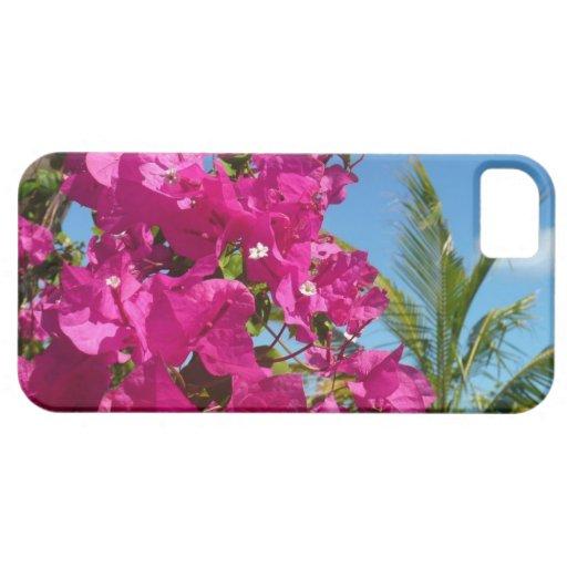 Escena tropical de la naturaleza del Bougainvillea iPhone 5 Carcasa