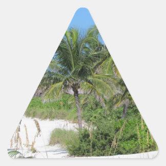 Escena tropical de la playa colcomanias de triangulo