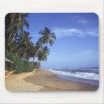 Escena tropical Mousepad de la playa del paraíso Tapete De Ratón