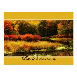 Escena vibrante del otoño de Poconos Tarjetas Postales