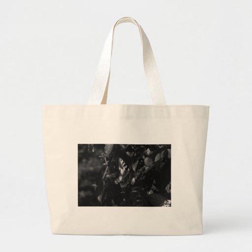 Escenas al aire libre bolsa